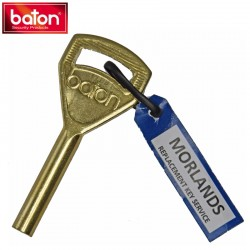 Baton disc lock key blank