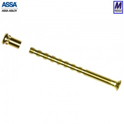 ASSA Blind Nut & Screw, Brass